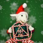 CSA's 2017 Christmas Party!