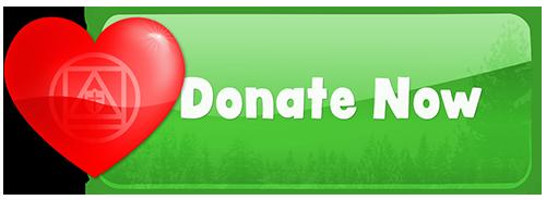 CSA-Custom-Donate-Button-Xmas-Colors-500px.png